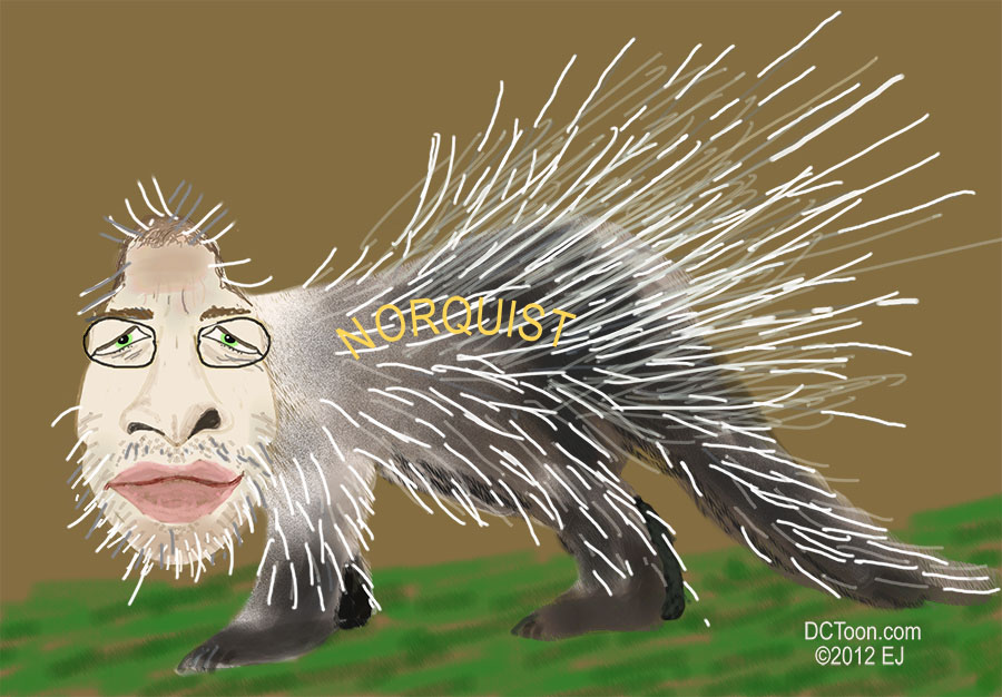 Norquist the porcupine